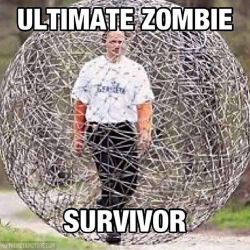 Zombies Survivor