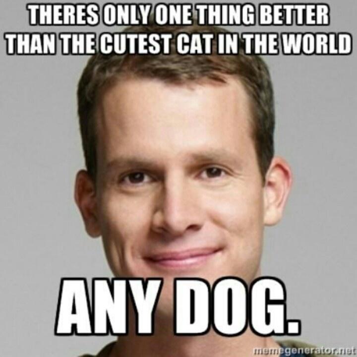 Any Dog