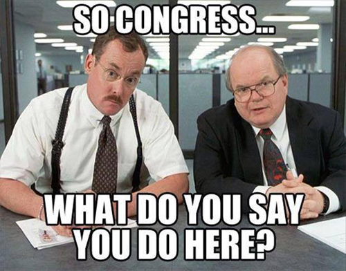 Congress-what-do-you-do-again