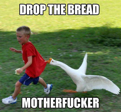 Just drop the bread